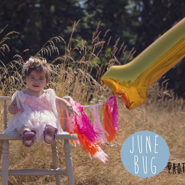 First Birthday Photo Session, snohomish county photographer. June Bug Photography.